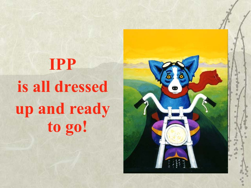 IPP is all dressed up and ready to go!