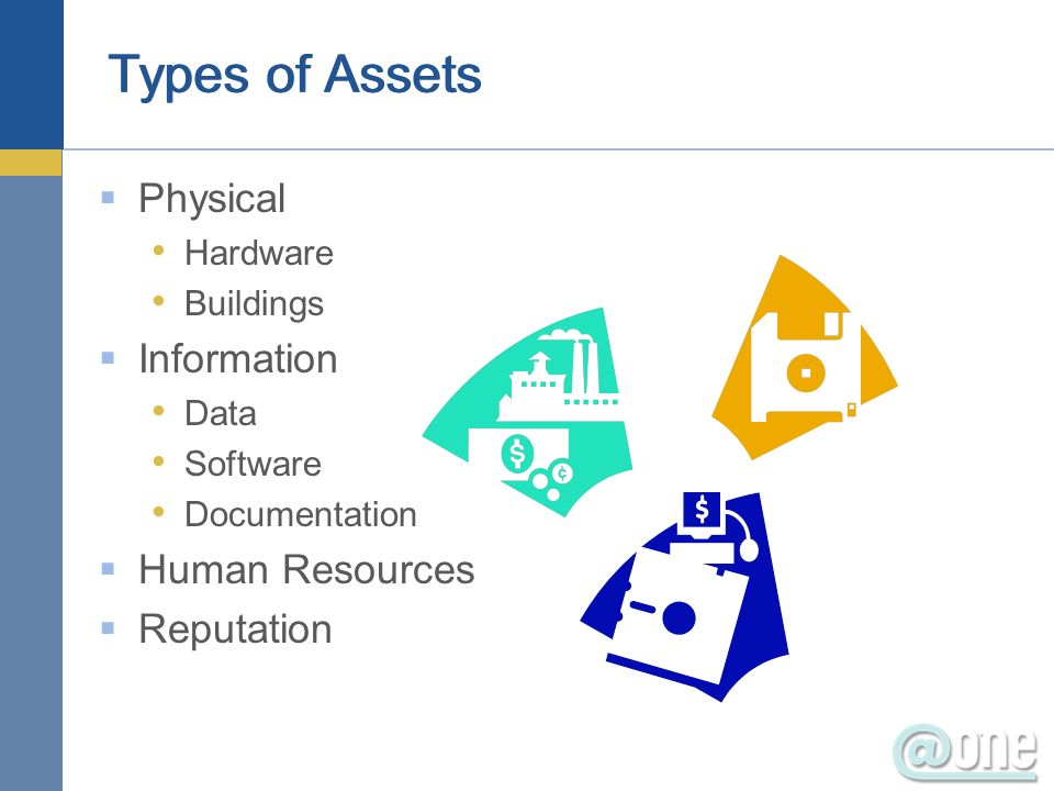 Physical Hardware Buildings Information Data Software Documentation Human Resources Reputation