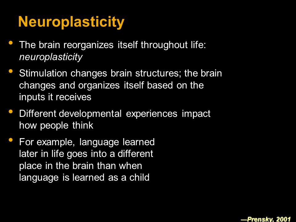 Neuroplasticity The brain reorganizes itself throughout life: neuroplasticity Stimulation changes brain structures; the brain changes and organizes itself based on the inputs it receives Different developmental experiences impact how people think For example, language learned later in life goes into a different place in the brain than when language is learned as a child Prensky, 2001