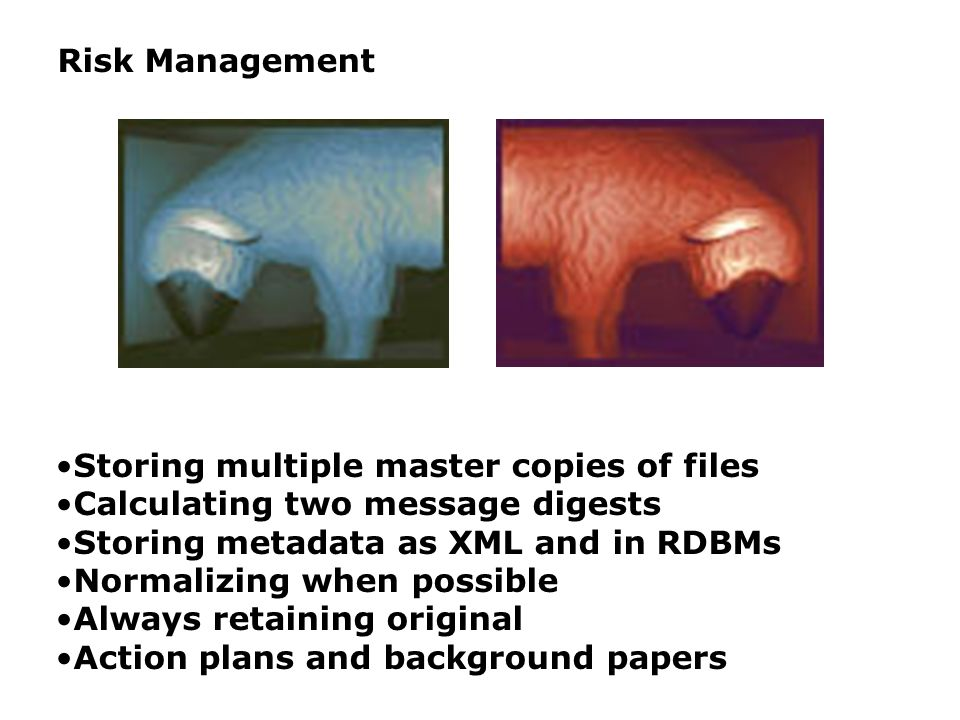 Risk Management Storing multiple master copies of files Calculating two message digests Storing metadata as XML and in RDBMs Normalizing when possible Always retaining original Action plans and background papers