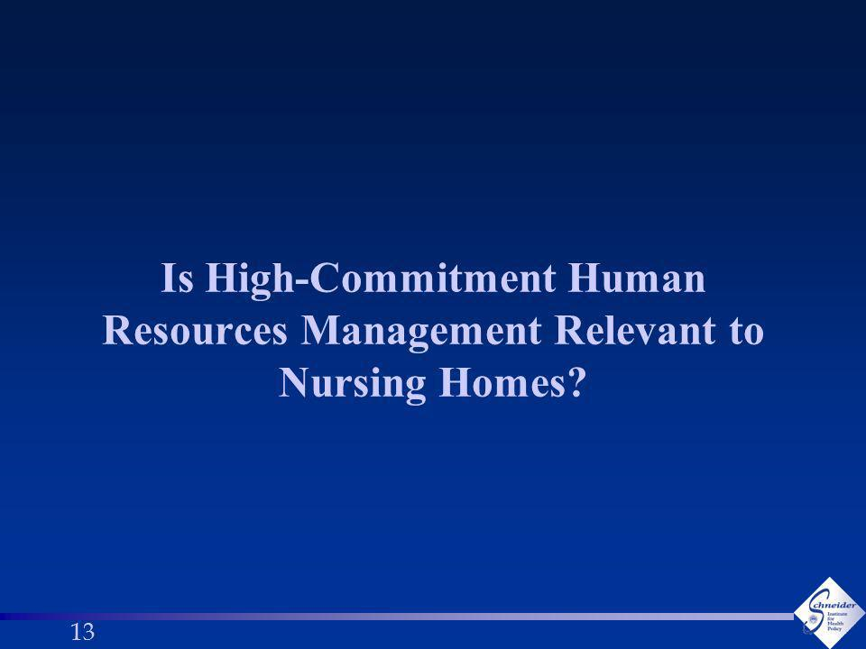 13 Is High-Commitment Human Resources Management Relevant to Nursing Homes
