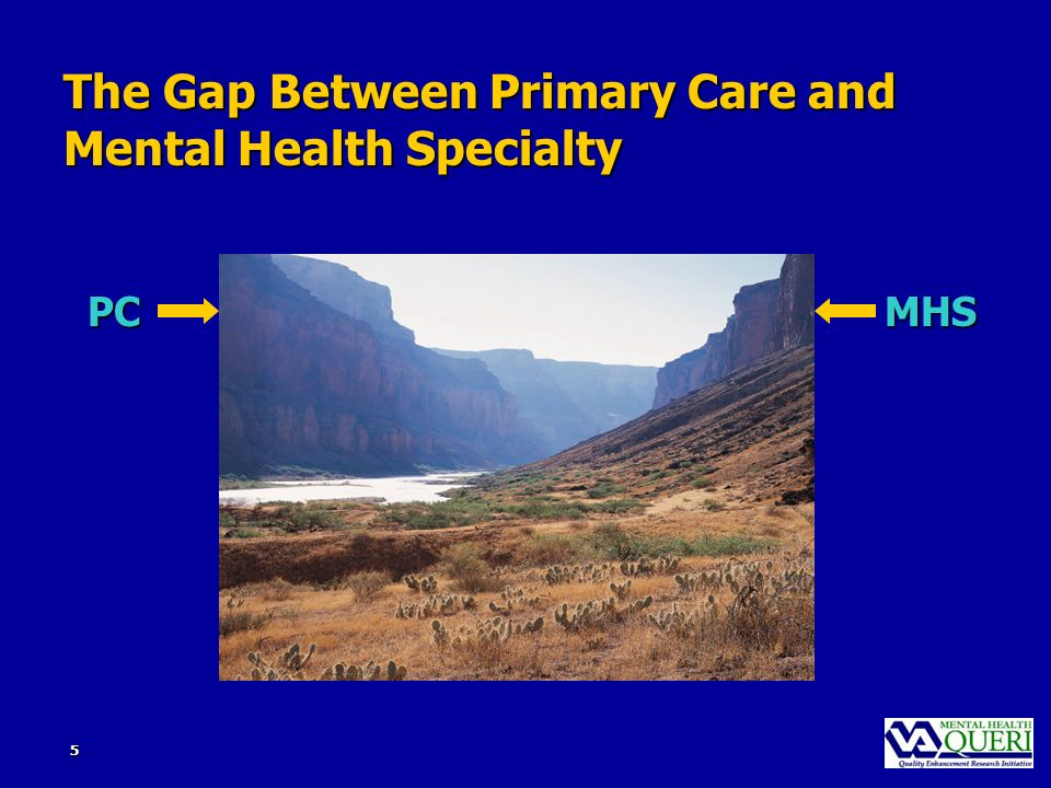 5 The Gap Between Primary Care and Mental Health Specialty PCMHS