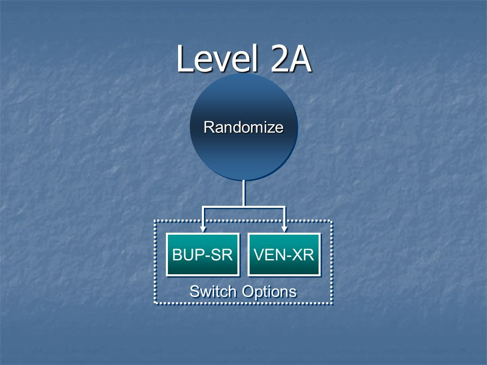 Level 2A RandomizeRandomize Switch Options BUP-SR VEN-XR