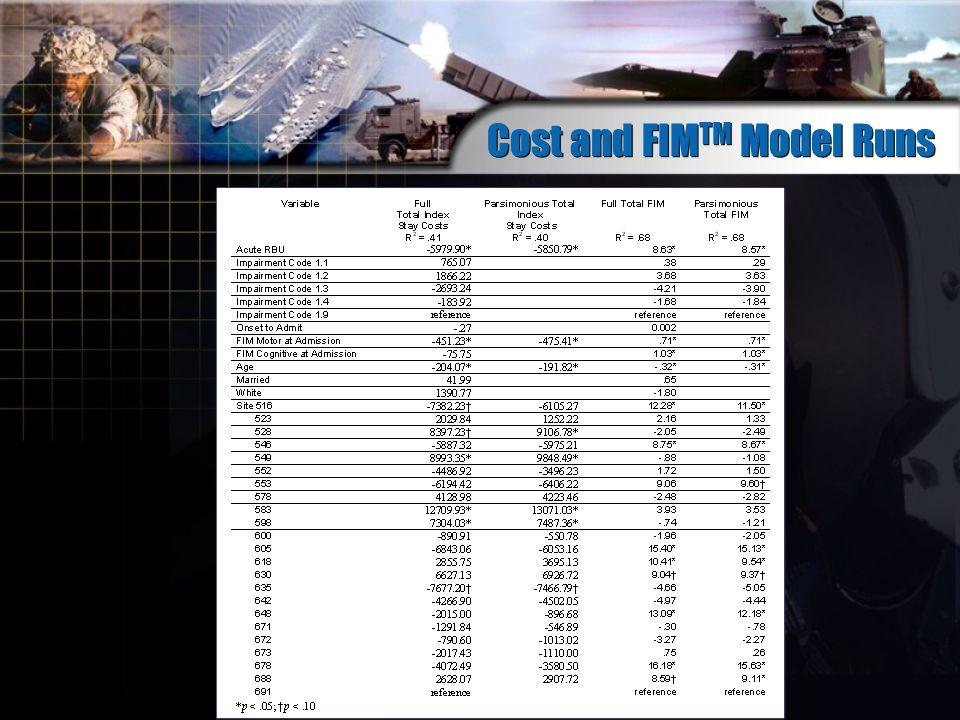 Cost and FIM TM Model Runs