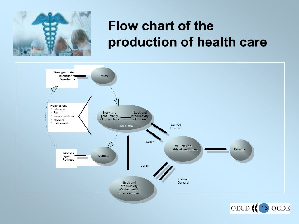 15 Flow chart of the production of health care New graduates Immigrants Re-entrants Leavers Emigrants Retirees Stock and productivity of physicians Volume and quality of health care Derived Demand Supply Patients Outflow Inflow Stock and productivity of other health care resources Supply Derived Demand Policies on: Education Pay Work conditions Migration Retirement Stock and productivity of nurses SKILL MIX