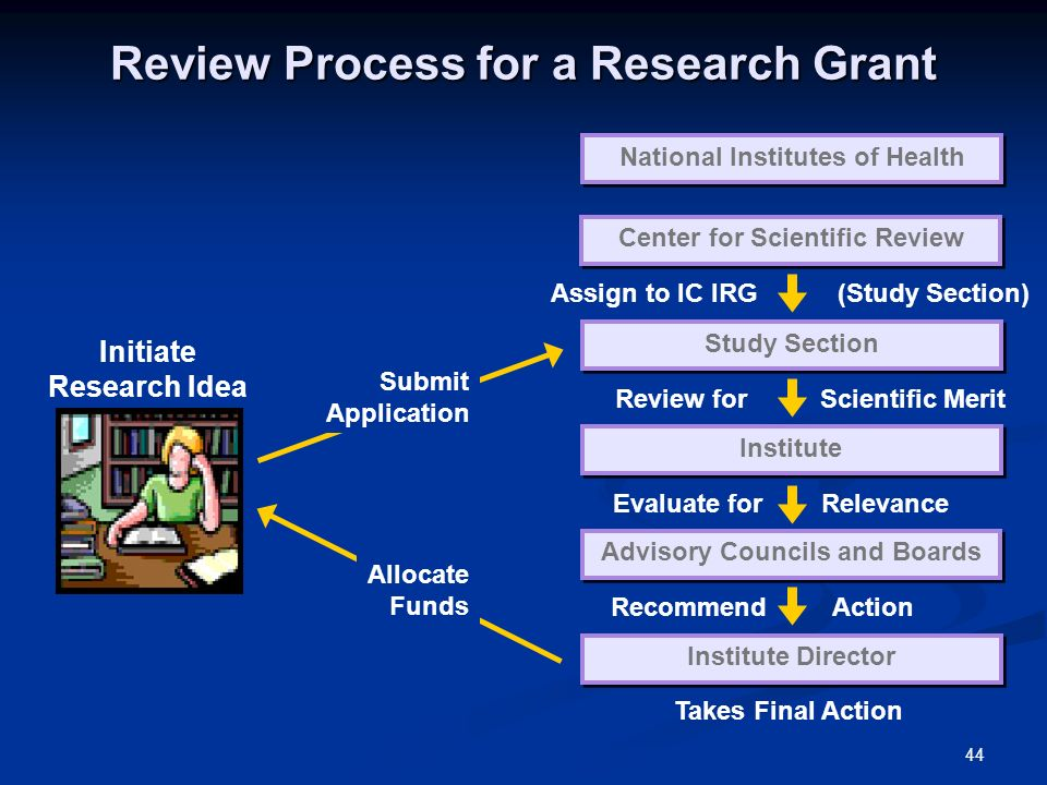 44 Review Process for a Research Grant Initiate Research Idea National Institutes of Health Center for Scientific Review Study Section Institute Advisory Councils and Boards Institute Director Assign to IC IRG (Study Section) Review for Scientific Merit Evaluate for Relevance Recommend Action Takes Final Action Submit Application Allocate Funds