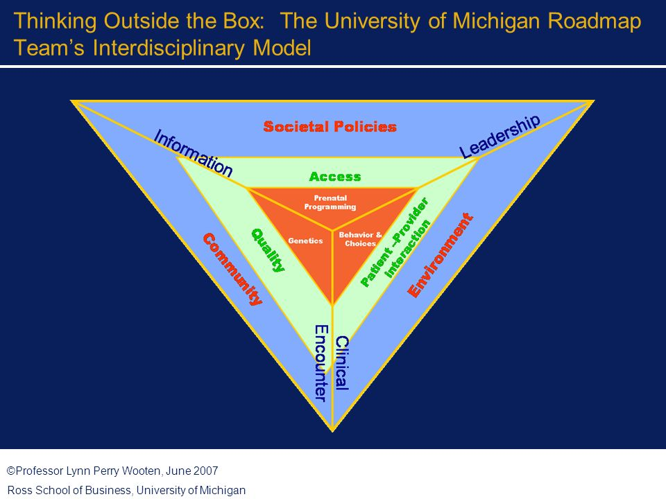 ©Professor Lynn Perry Wooten, June 2007 Ross School of Business, University of Michigan Thinking Outside the Box: The University of Michigan Roadmap Teams Interdisciplinary Model