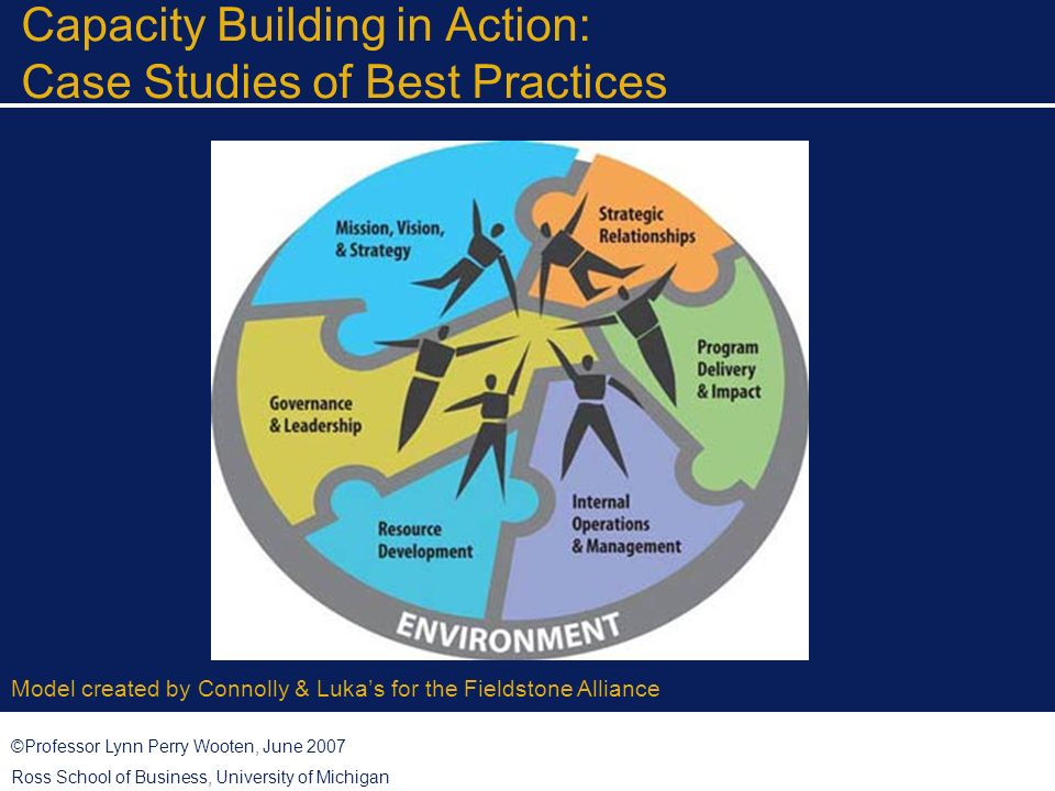 ©Professor Lynn Perry Wooten, June 2007 Ross School of Business, University of Michigan Capacity Building in Action: Case Studies of Best Practices Model created by Connolly & Lukas for the Fieldstone Alliance