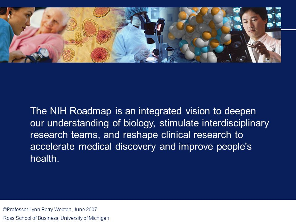©Professor Lynn Perry Wooten, June 2007 Ross School of Business, University of Michigan The NIH Roadmap is an integrated vision to deepen our understanding of biology, stimulate interdisciplinary research teams, and reshape clinical research to accelerate medical discovery and improve people s health.