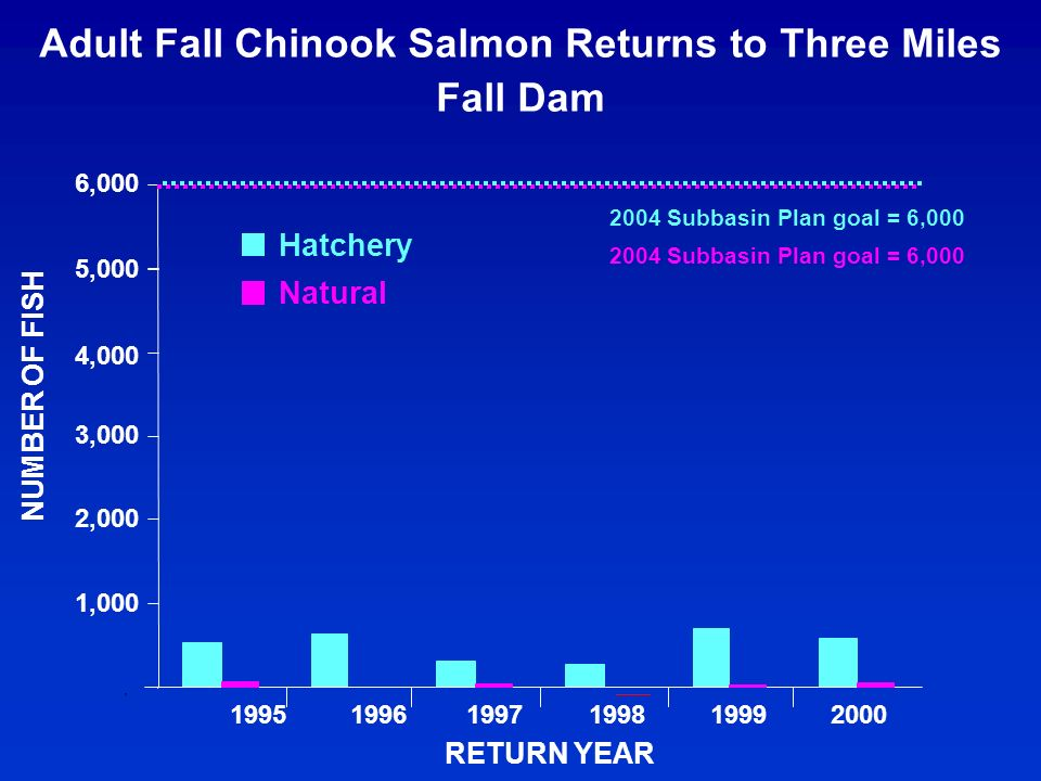 Adult Fall Chinook Salmon Returns to Three Miles Fall Dam 3,000 199519961997199819992000 RETURN YEAR NUMBER OF FISH Hatchery Natural 6,000 0 2004 Subbasin Plan goal = 6,000 1,000 2,000 4,000 5,000