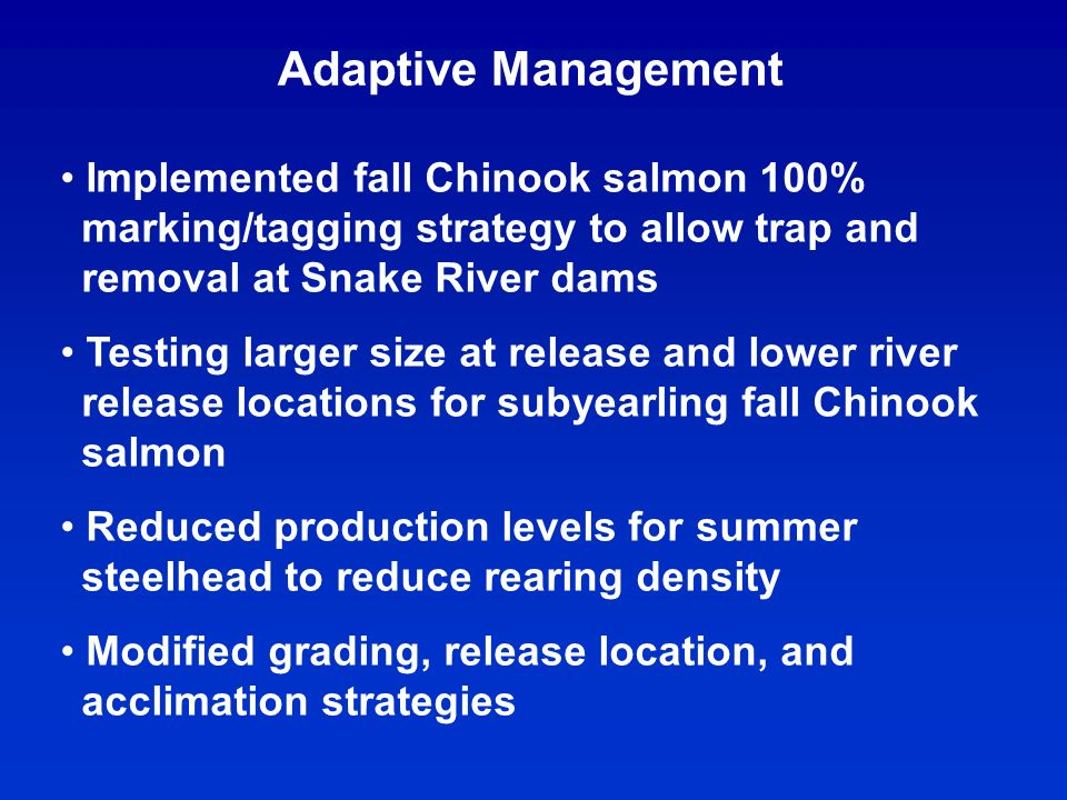 Adaptive Management Implemented fall Chinook salmon 100% marking/tagging strategy to allow trap and removal at Snake River dams Testing larger size at release and lower river release locations for subyearling fall Chinook salmon Reduced production levels for summer steelhead to reduce rearing density Modified grading, release location, and acclimation strategies