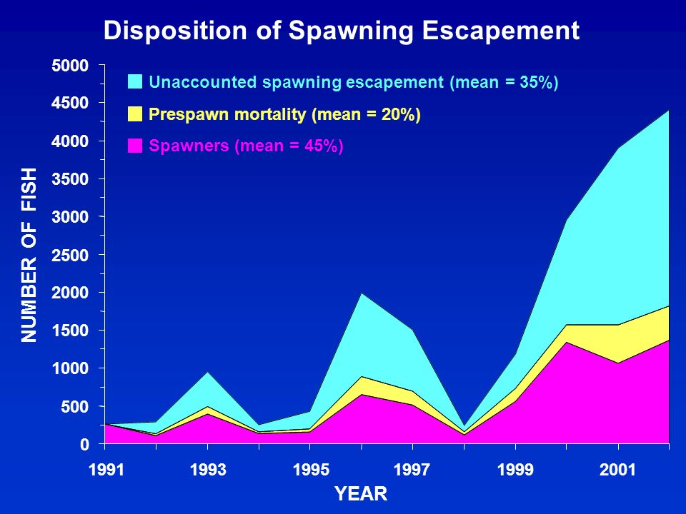 Disposition of Spawning Escapement 0 500 1000 1500 2000 2500 3000 3500 4000 4500 5000 1991199319951997 1999 2001 YEAR NUMBER OF FISH Unaccounted spawning escapement (mean = 35%) Prespawn mortality (mean = 20%) Spawners (mean = 45%)