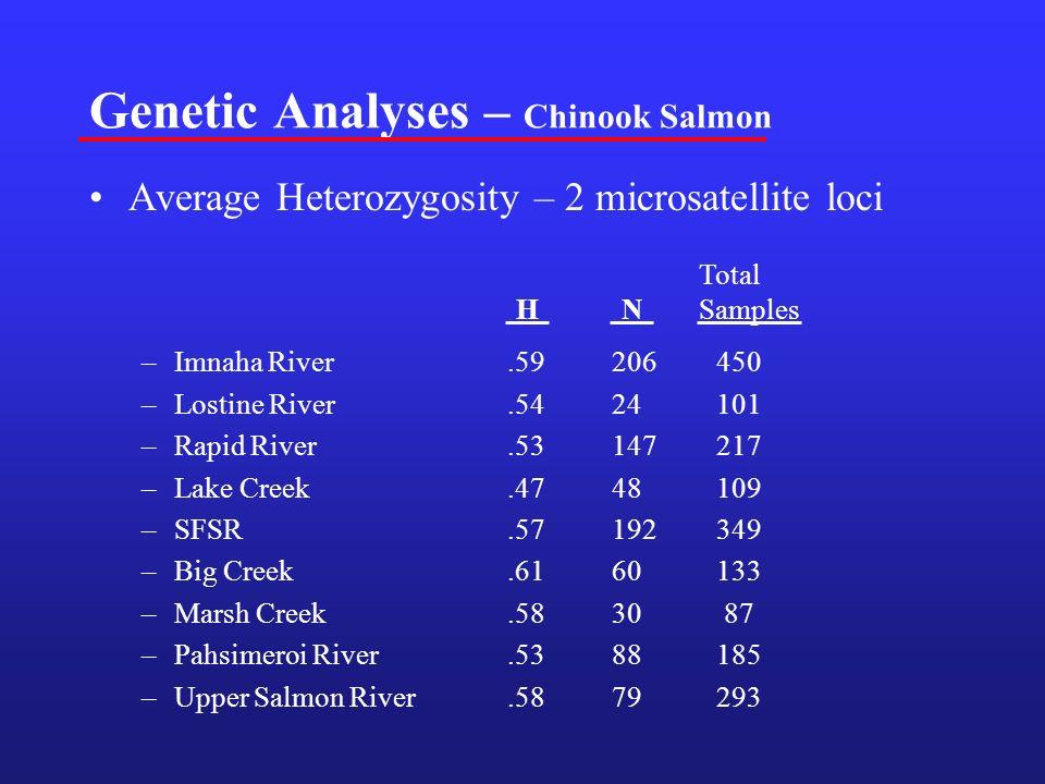 Genetic Analyses – Chinook Salmon Average Heterozygosity – 2 microsatellite loci –Imnaha River.59206450 –Lostine River.5424101 –Rapid River.53147217 –