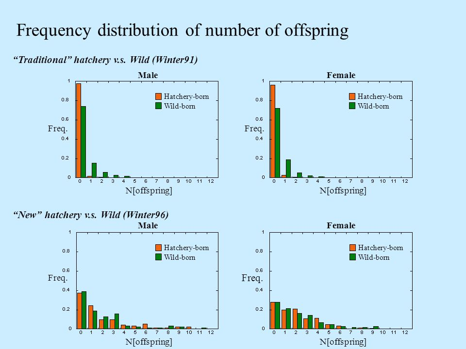Frequency distribution of number of offspring Traditional hatchery v.s.