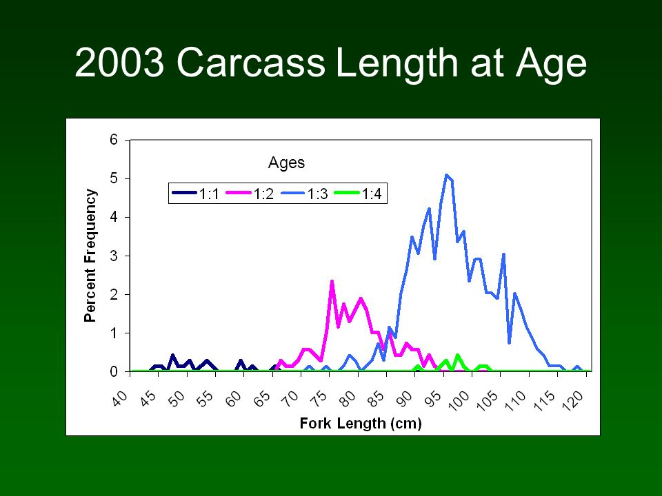 2003 Carcass Length at Age Ages