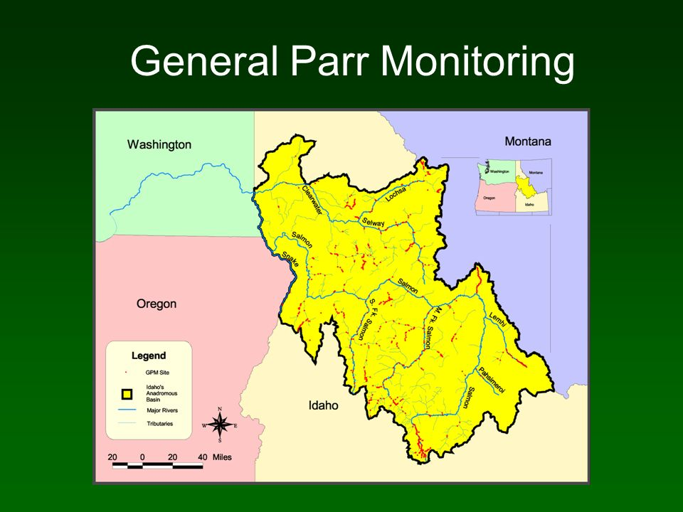 General Parr Monitoring
