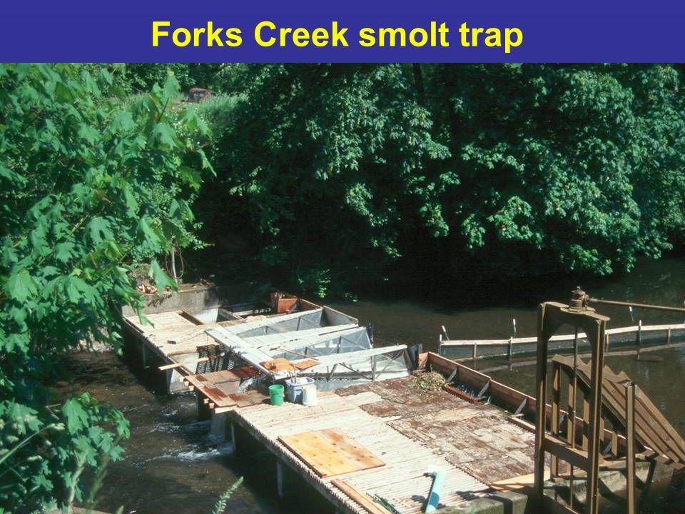 Forks Creek smolt trap