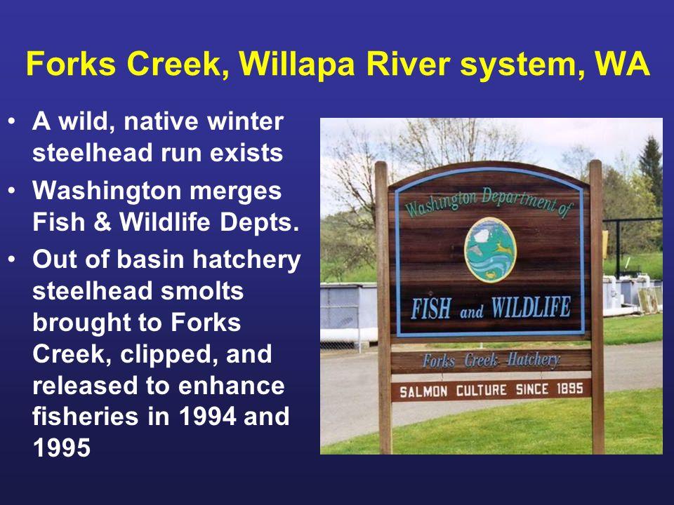 Forks Creek, Willapa River system, WA A wild, native winter steelhead run exists Washington merges Fish & Wildlife Depts.