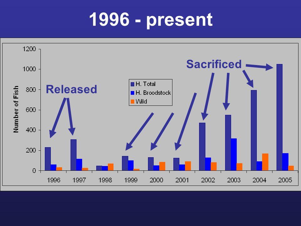 1996 - present Released Sacrificed