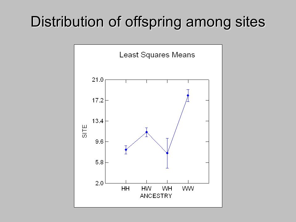 Distribution of offspring among sites