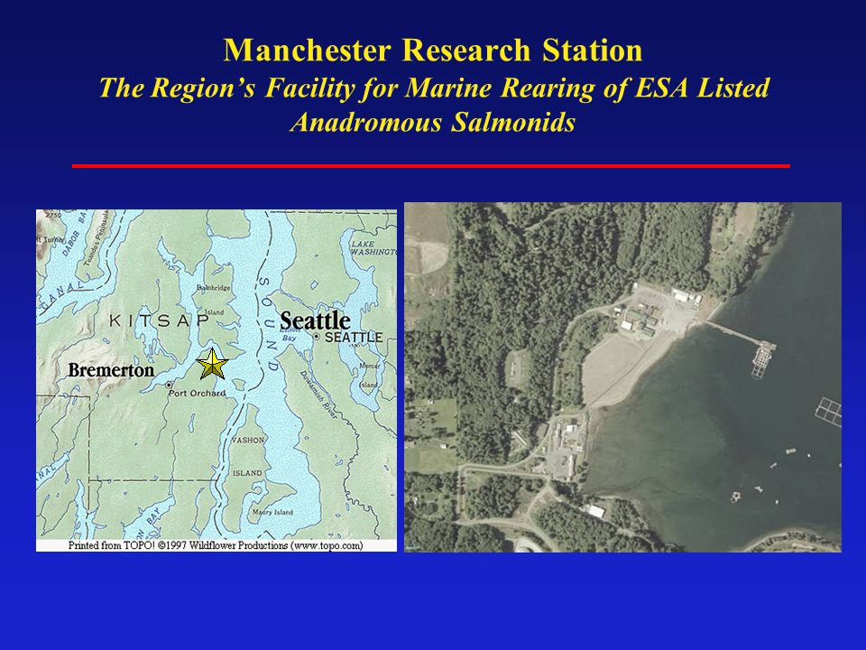 Manchester Research Station The Regions Facility for Marine Rearing of ESA Listed Anadromous Salmonids