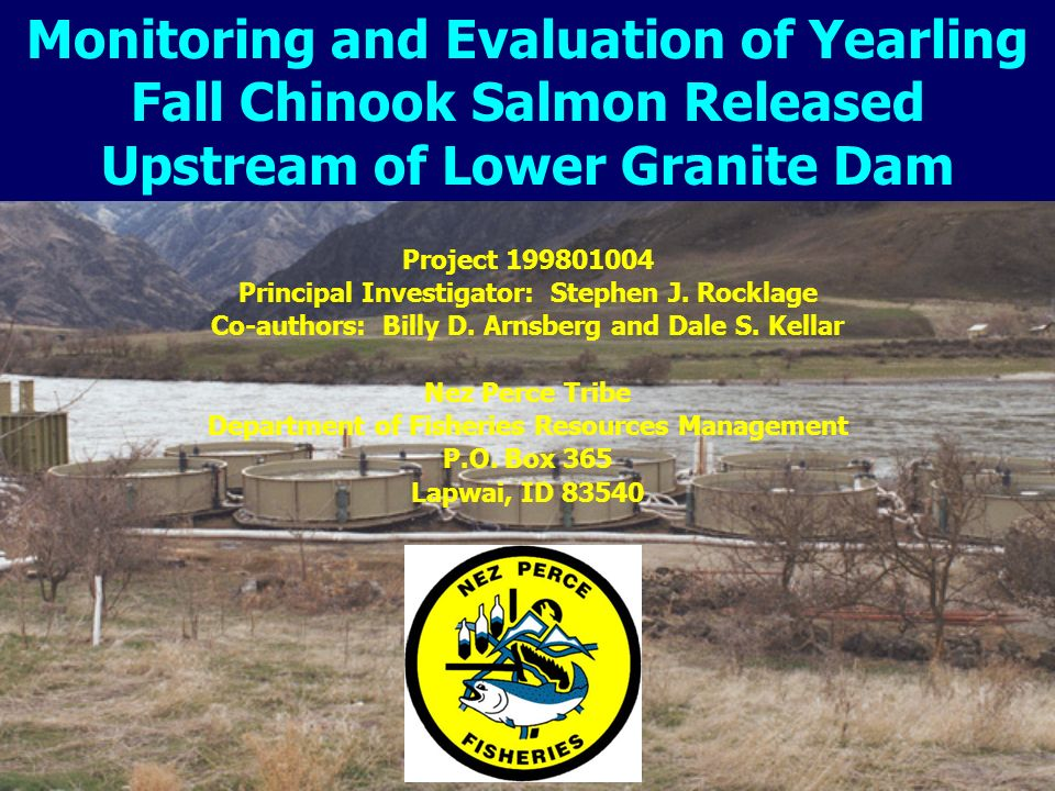 Project Goal The goal of this project is to monitor and evaluate health and condition, post-release survival and behavior and adult returns of yearling and subyearling fall chinook salmon released from the fall chinook acclimation (FCAP) facilities upstream of Lower Granite Dam and feedback to co-managers to provide adaptive management opportunities.