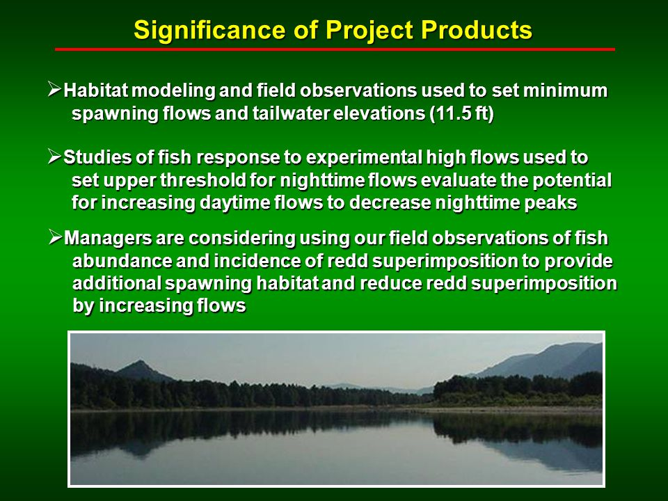 Significance of Project Products Habitat modeling and field observations used to set minimum Habitat modeling and field observations used to set minimum spawning flows and tailwater elevations (11.5 ft) spawning flows and tailwater elevations (11.5 ft) Studies of fish response to experimental high flows used to Studies of fish response to experimental high flows used to set upper threshold for nighttime flows evaluate the potential set upper threshold for nighttime flows evaluate the potential for increasing daytime flows to decrease nighttime peaks for increasing daytime flows to decrease nighttime peaks Managers are considering using our field observations of fish Managers are considering using our field observations of fish abundance and incidence of redd superimposition to provide abundance and incidence of redd superimposition to provide additional spawning habitat and reduce redd superimposition additional spawning habitat and reduce redd superimposition by increasing flows by increasing flows