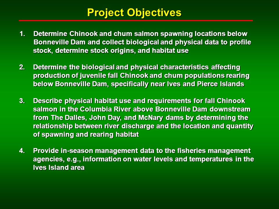 Project Objectives 1.Determine Chinook and chum salmon spawning locations below Bonneville Dam and collect biological and physical data to profile stock, determine stock origins, and habitat use stock, determine stock origins, and habitat use 2.Determine the biological and physical characteristics affecting production of juvenile fall Chinook and chum populations rearing below Bonneville Dam, specifically near Ives and Pierce Islands 3.Describe physical habitat use and requirements for fall Chinook salmon in the Columbia River above Bonneville Dam downstream from The Dalles, John Day, and McNary dams by determining the relationship between river discharge and the location and quantity of spawning and rearing habitat 4.Provide in-season management data to the fisheries management agencies, e.g., information on water levels and temperatures in the Ives Island area