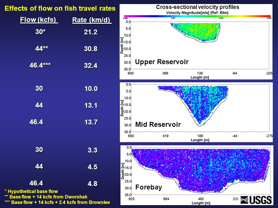 Effects of flow on fish travel rates 30* 44** 44**46.4*** 21.230.832.4 30 44 4446.4 30 44 4446.4 10.013.113.7 3.3 4.5 4.5 4.8 4.8 Flow (kcfs) Rate (km/d) Upper Reservoir Mid Reservoir Forebay Cross-sectional velocity profiles * Hypothetical base flow ** Base flow + 14 kcfs from Dworshak *** Base flow + 14 kcfs + 2.4 kcfs from Brownlee