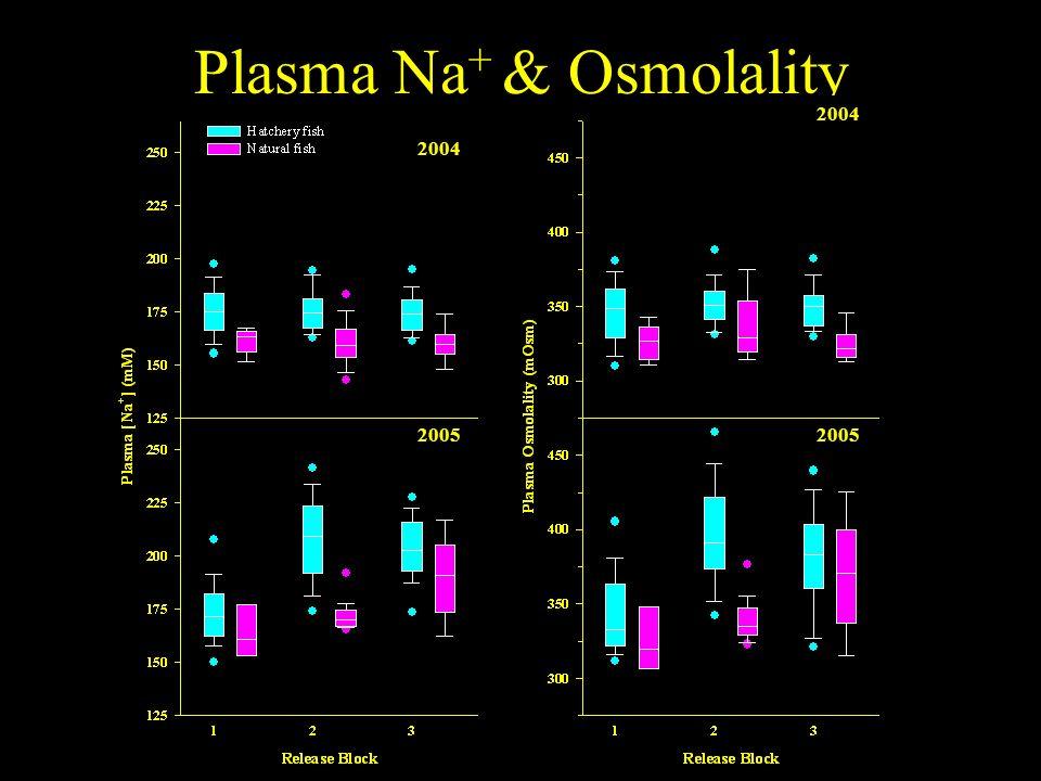 Plasma Na + & Osmolality 2004 2005