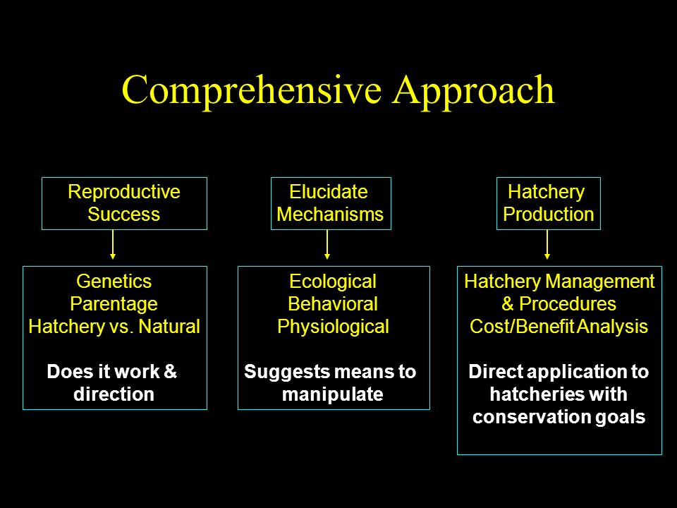 Comprehensive Approach Hatchery Management & Procedures Cost/Benefit Analysis Direct application to hatcheries with conservation goals Hatchery Production Ecological Behavioral Physiological Suggests means to manipulate Reproductive Success Elucidate Mechanisms Genetics Parentage Hatchery vs.