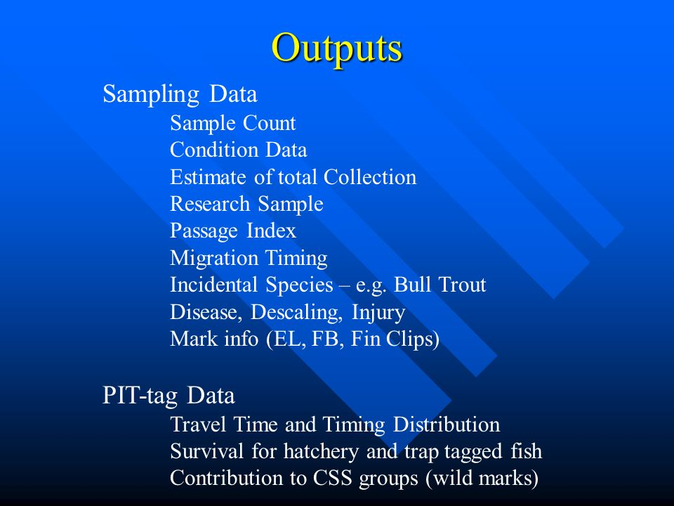 Outputs Sampling Data Sample Count Condition Data Estimate of total Collection Research Sample Passage Index Migration Timing Incidental Species – e.g.