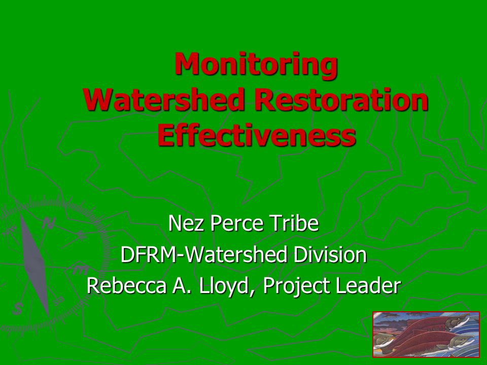 Monitoring Watershed Restoration Effectiveness Nez Perce Tribe DFRM-Watershed Division Rebecca A.