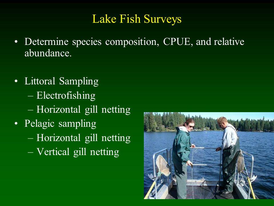 Lake Fish Surveys Determine species composition, CPUE, and relative abundance.