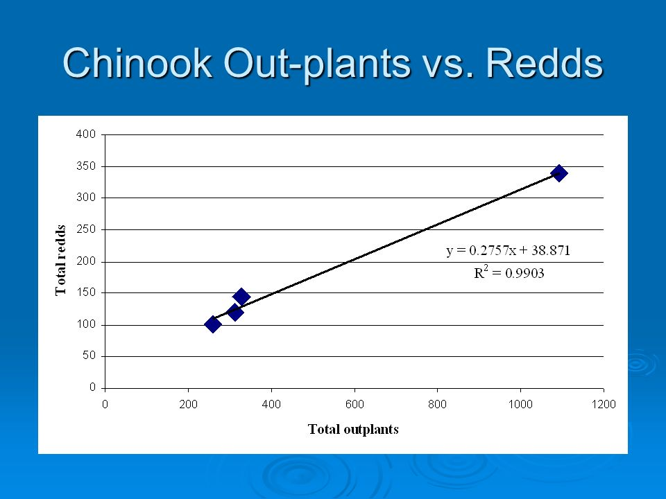 Chinook Out-plants vs. Redds