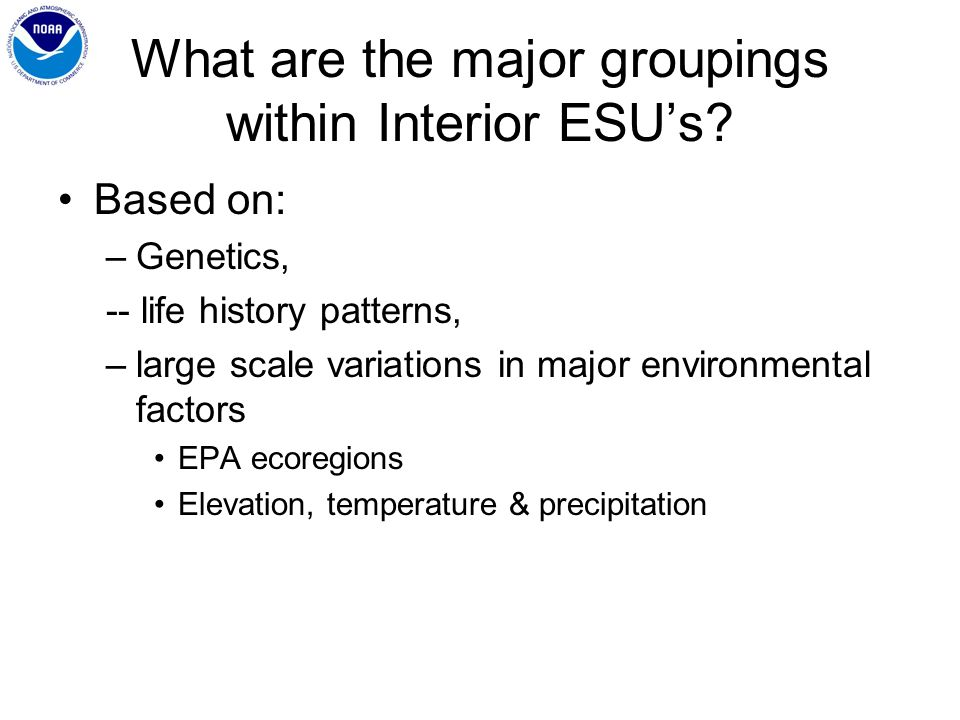 What are the major groupings within Interior ESUs.