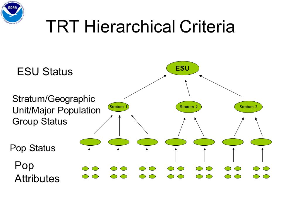 TRT Hierarchical Criteria Pop Attributes Pop Status Stratum/Geographic Unit/Major Population Group Status ESU Status ESU Stratum 1 Stratum 2Stratum 3