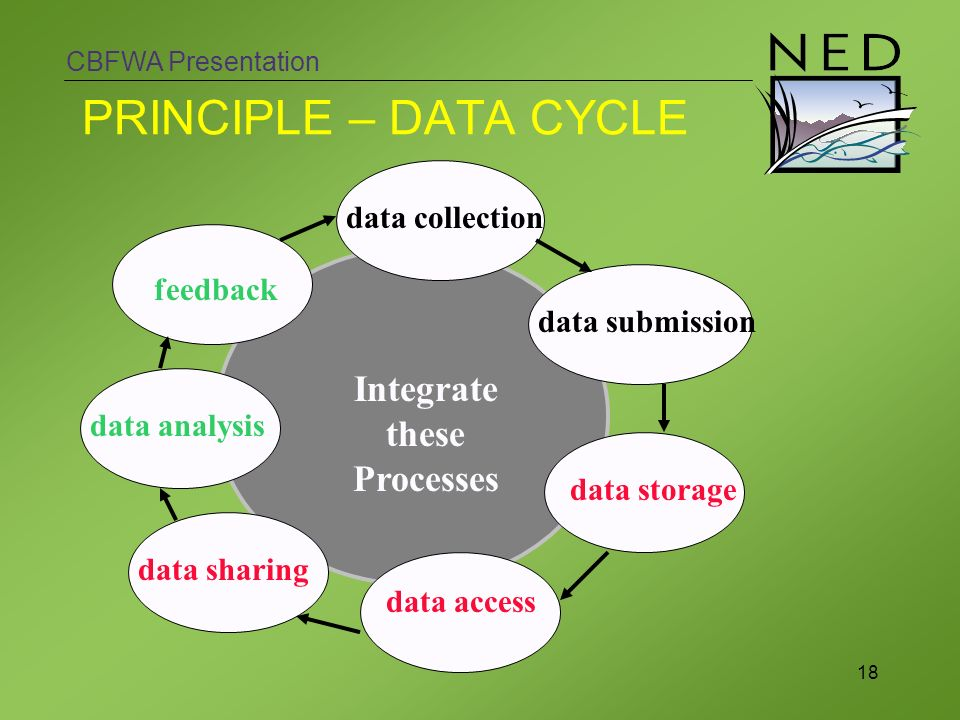 CBFWA Presentation 18 PRINCIPLE – DATA CYCLE data submission data collection Integrate these Processes data storage data sharing data access feedback data analysis