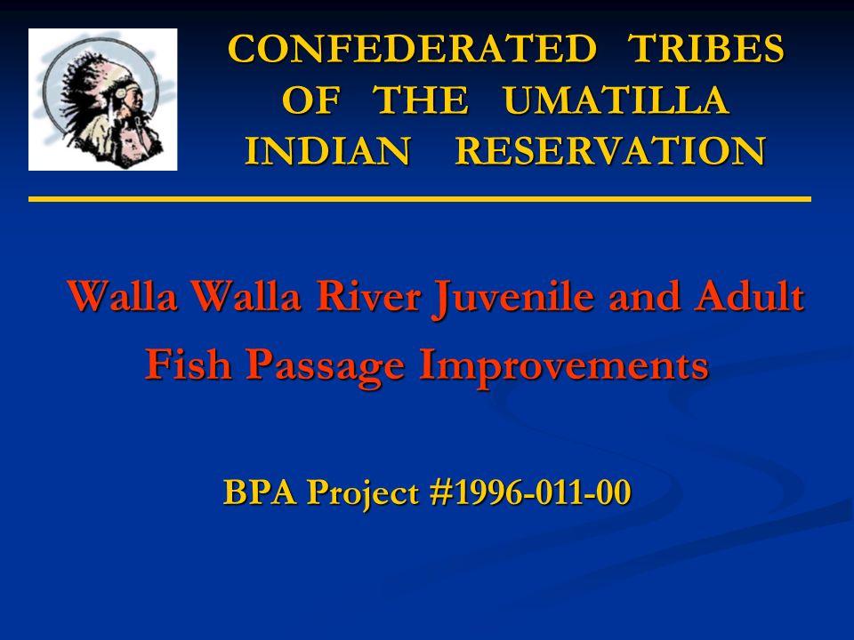 Little Walla Walla Diversion and Screen Screen Walla River Little Walla Walla