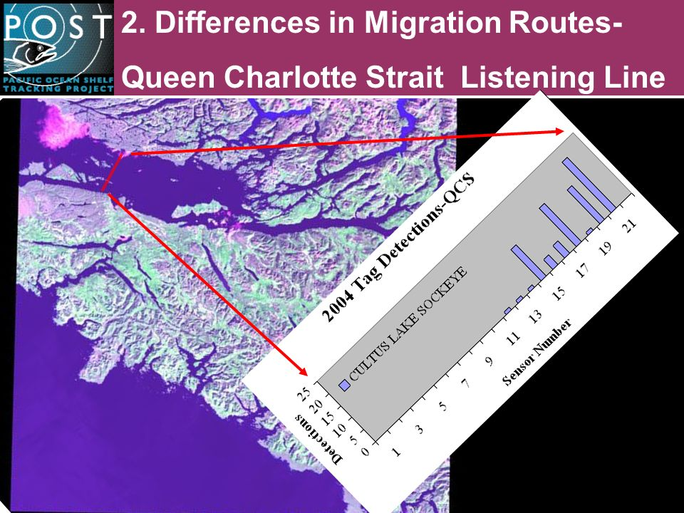 2. Differences in Migration Routes- Queen Charlotte Strait Listening Line