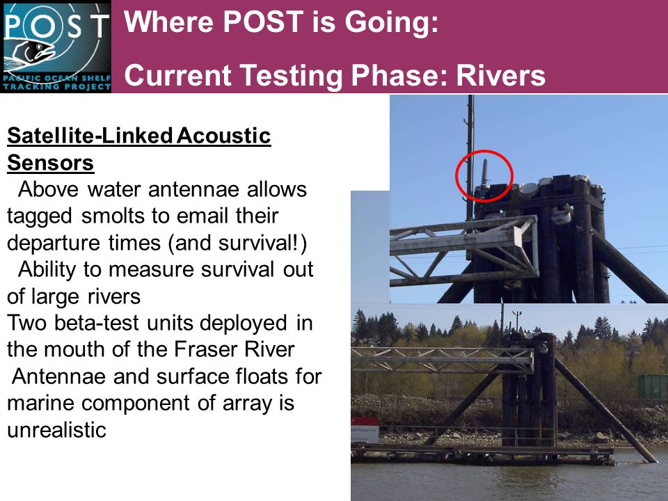 Where POST is Going: Current Testing Phase: Rivers Satellite-Linked Acoustic Sensors Above water antennae allows tagged smolts to email their departure times (and survival!) Ability to measure survival out of large rivers Two beta-test units deployed in the mouth of the Fraser River Antennae and surface floats for marine component of array is unrealistic