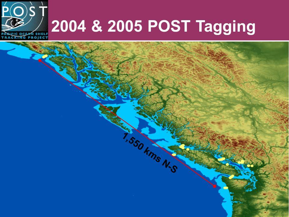 2005 POST Tagging