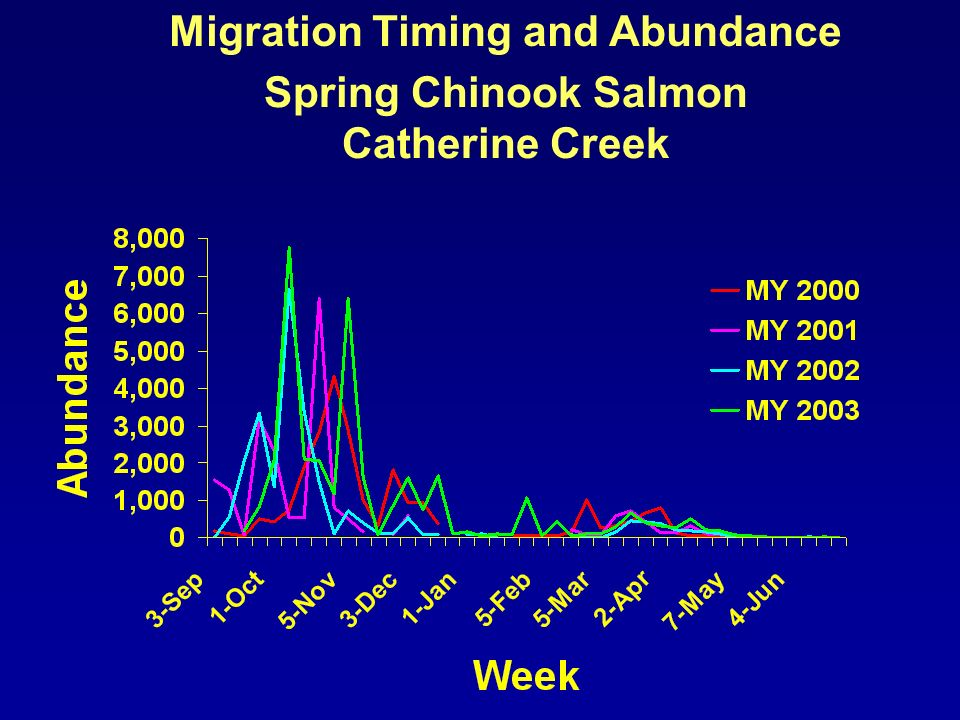 Migration Timing and Abundance Steelhead Grande Ronde River