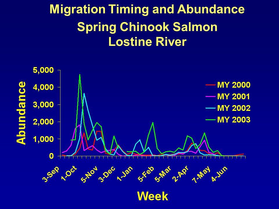 Migration Timing and Abundance Spring Chinook Salmon Minam River