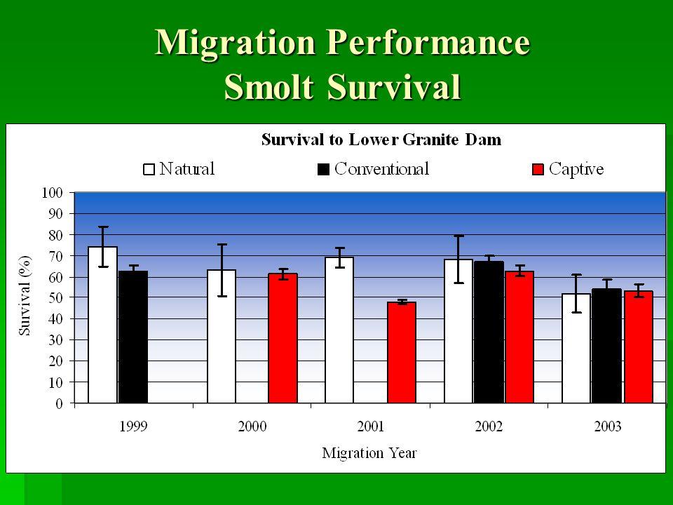 Migration Performance Smolt Survival