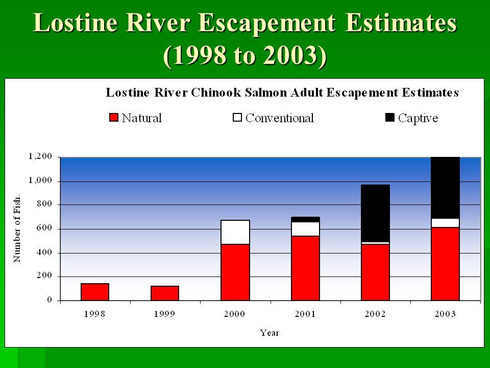 Lostine River Escapement Estimates (1998 to 2003)