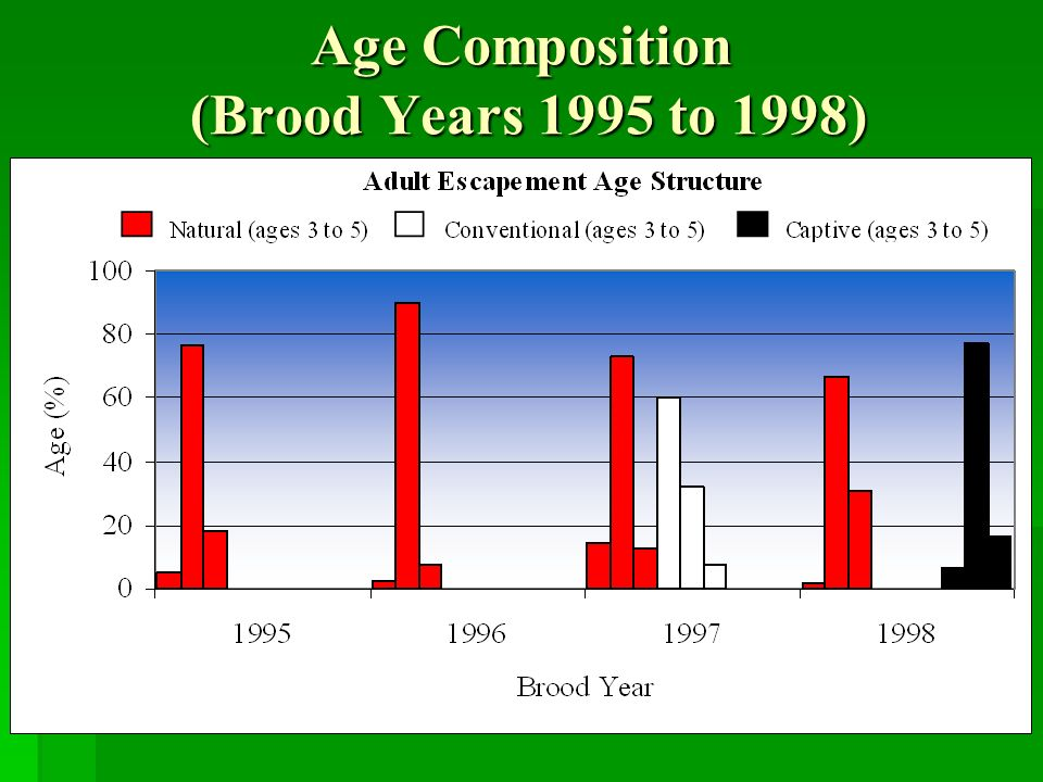 Age Composition (Brood Years 1995 to 1998)
