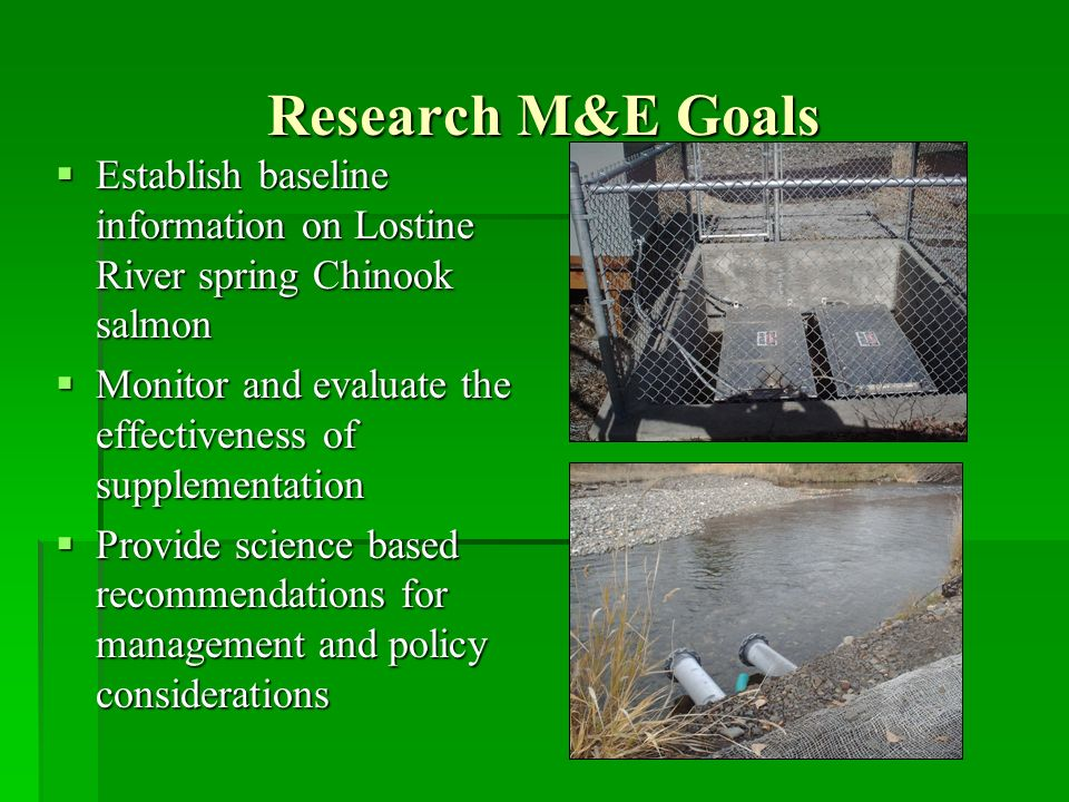 Research M&E Goals Establish baseline information on Lostine River spring Chinook salmon Establish baseline information on Lostine River spring Chinook salmon Monitor and evaluate the effectiveness of supplementation Monitor and evaluate the effectiveness of supplementation Provide science based recommendations for management and policy considerations Provide science based recommendations for management and policy considerations