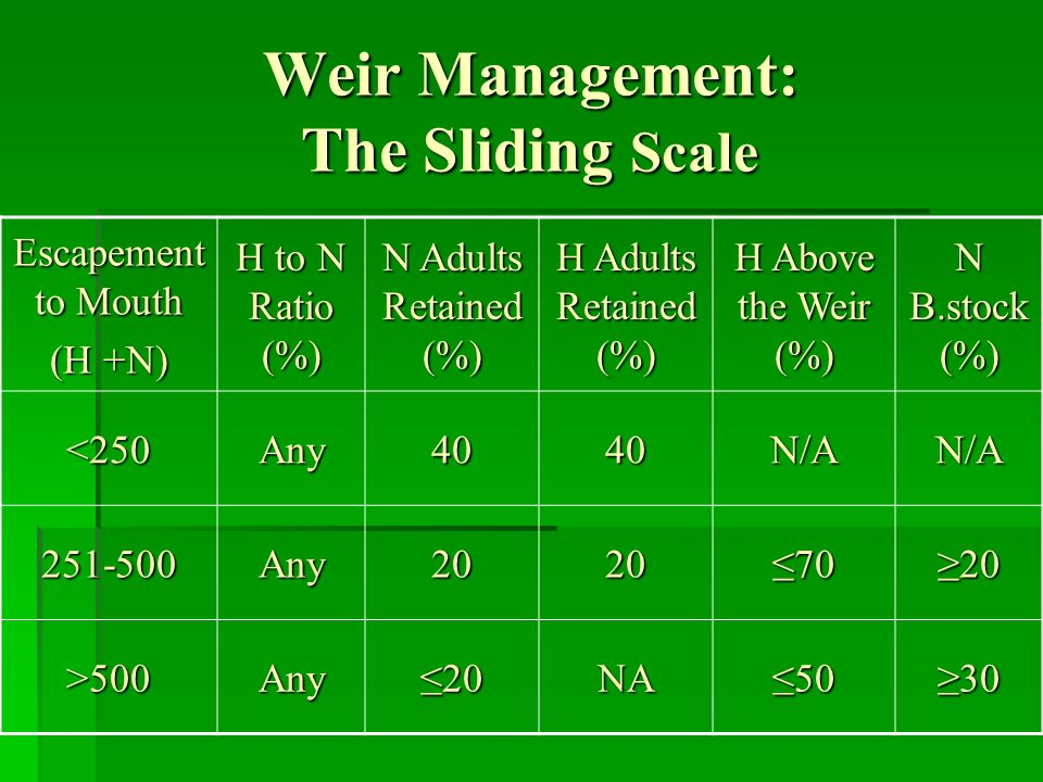 Weir Management: The Sliding Scale Escapement to Mouth (H +N) H to N Ratio (%) N Adults Retained (%) H Adults Retained (%) H Above the Weir (%) N B.stock (%) <250Any4040N/AN/A 251-500Any20207020 >500Any20NA5030