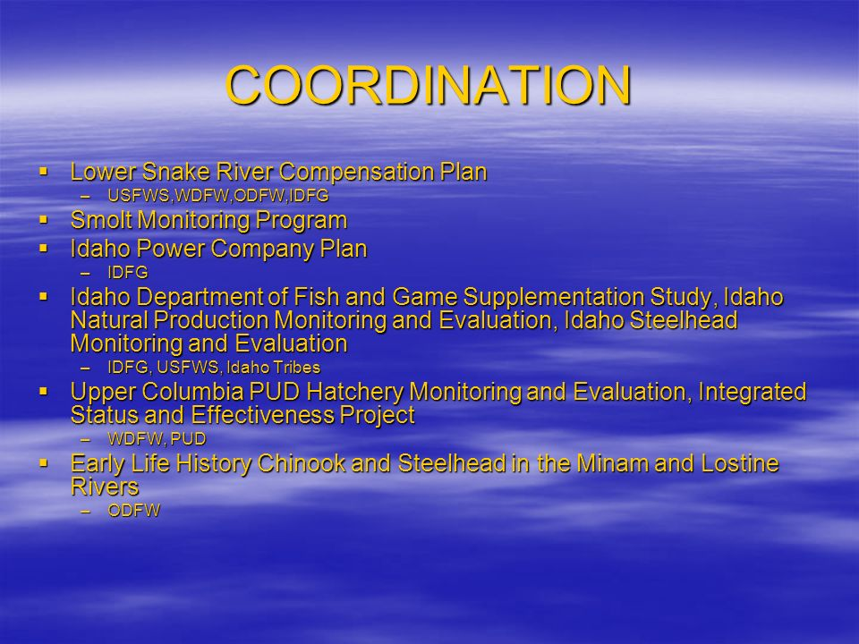 COORDINATION Lower Snake River Compensation Plan Lower Snake River Compensation Plan –USFWS,WDFW,ODFW,IDFG Smolt Monitoring Program Smolt Monitoring Program Idaho Power Company Plan Idaho Power Company Plan –IDFG Idaho Department of Fish and Game Supplementation Study, Idaho Natural Production Monitoring and Evaluation, Idaho Steelhead Monitoring and Evaluation Idaho Department of Fish and Game Supplementation Study, Idaho Natural Production Monitoring and Evaluation, Idaho Steelhead Monitoring and Evaluation –IDFG, USFWS, Idaho Tribes Upper Columbia PUD Hatchery Monitoring and Evaluation, Integrated Status and Effectiveness Project Upper Columbia PUD Hatchery Monitoring and Evaluation, Integrated Status and Effectiveness Project –WDFW, PUD Early Life History Chinook and Steelhead in the Minam and Lostine Rivers Early Life History Chinook and Steelhead in the Minam and Lostine Rivers –ODFW